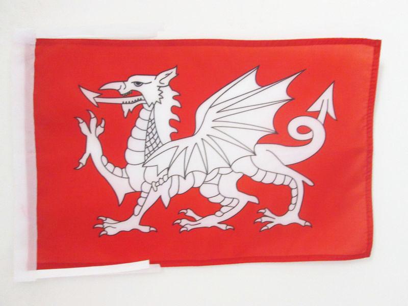 Zubehör zum Hissen Drachenflagge Flagge Fahne Drache 44x54cm