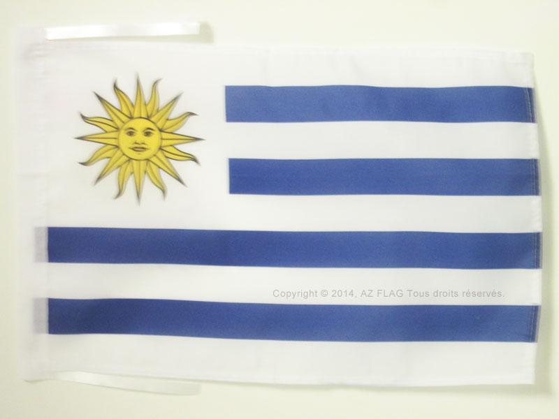 Piccola BANDIERINA UMANITARIA 10 x 15 cm AZ FLAG Bandiera da Tavolo Croce Rossa 15x10cm Punta Dorata